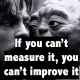 Picture from Master Yoda and Luc while training for Jedi